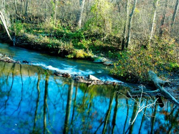 Shenandoah Reflections 2