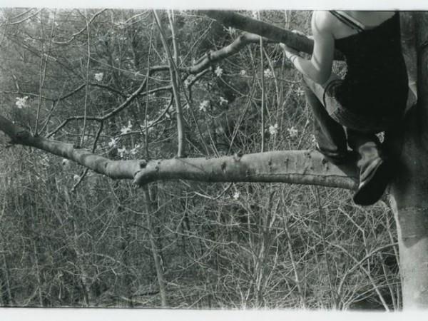 Self in Tree